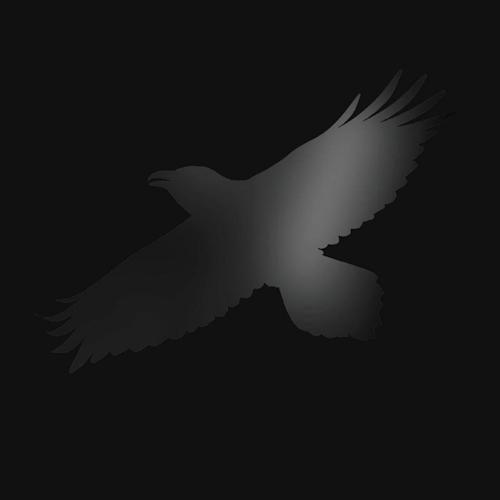 Sigur-Ros-Odin-s-raven-magic