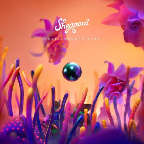 Sheppard-Kaleidoscope-eyes