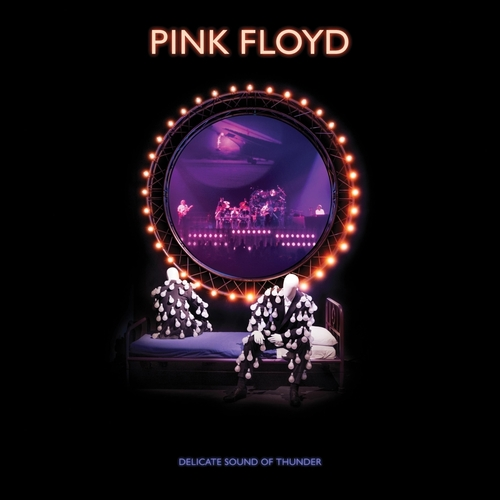 Pink-Floyd-Delicate-sound-deluxe