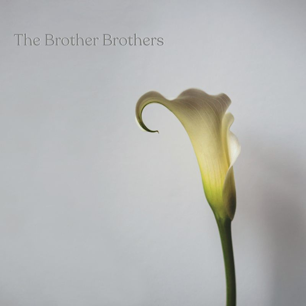 Brother-Brothers-Calla-lily