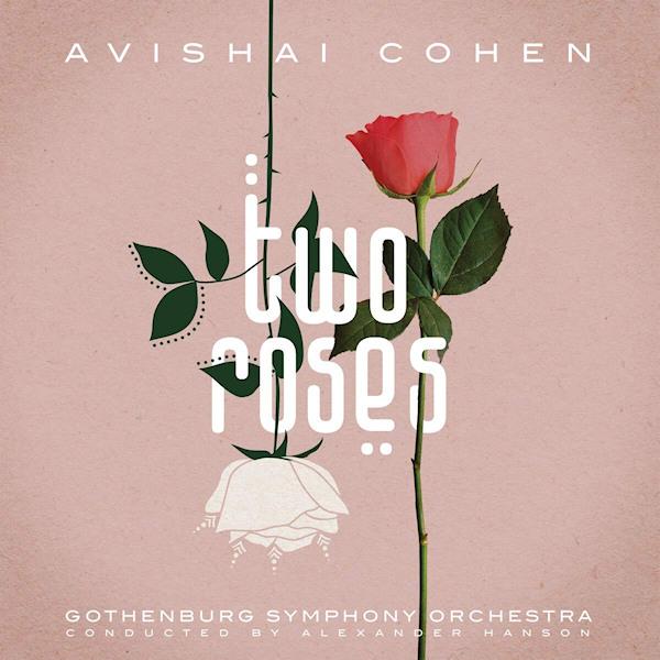 Avishai-Cohen-Two-roses