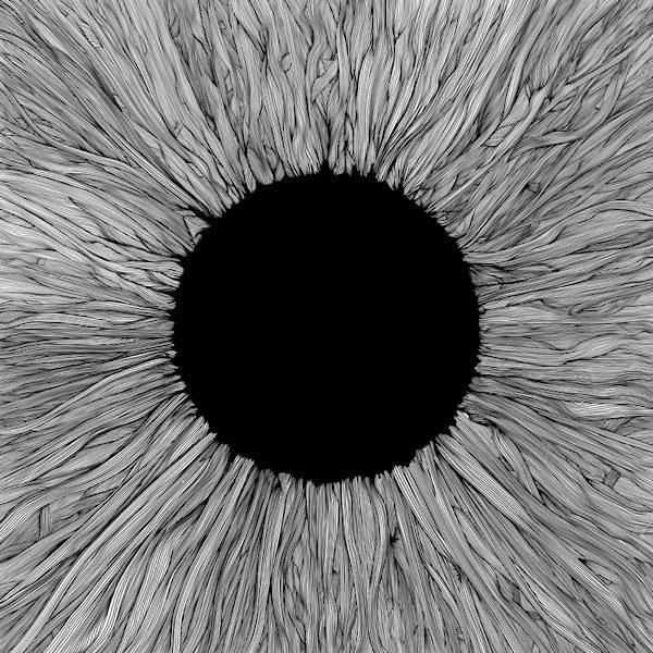 Vola-Witness-digi
