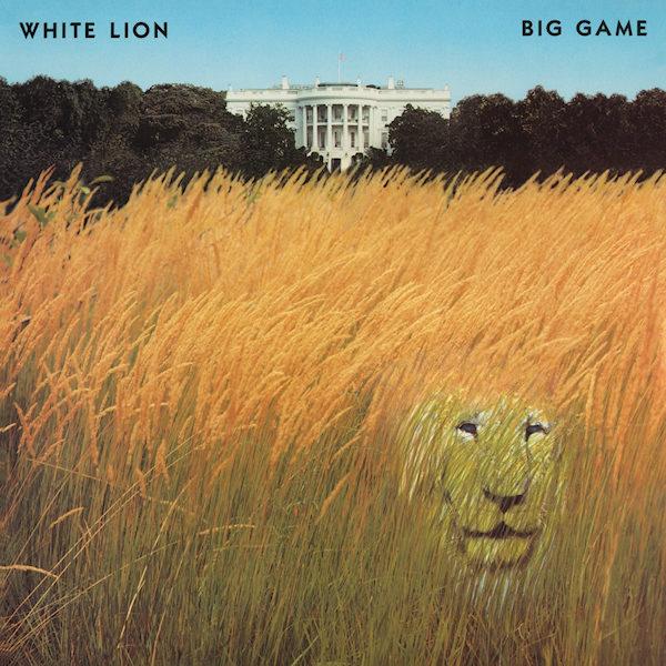 White-Lion-Big-game