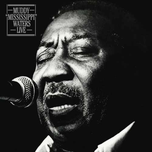 Muddy-Waters-Muddy-mississippi