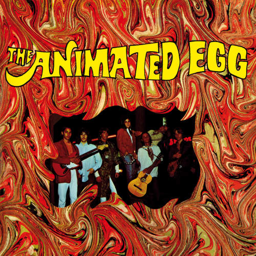 Animated-Egg-Animated-egg