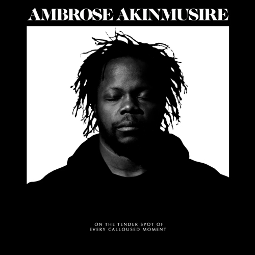Ambrose-Akinmusire-On-the-tender-spot-of