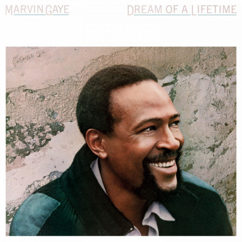 Marvin-Gaye-Dream-of-a-lifetime