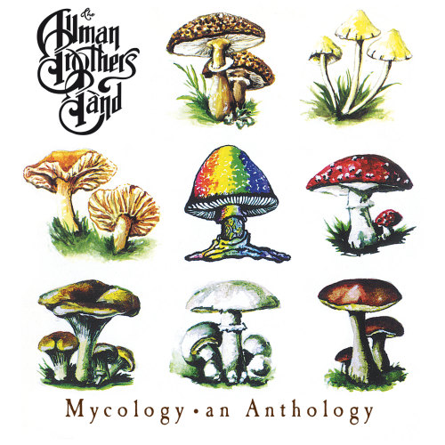 The-Allman-Brothers-Band-Mycology-an-anthology